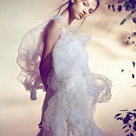 Ванеса Тонова е вече популярно лице на европейския моден пазар. Въпреки ръста си от 172 см, тя бива предпочитана заради невроятното си нежно излъчване. Снимала е известни модни списания като L'officiel и iMute. В чужбина Ванеса работи с едни от най-добрите модни агенции като Unique Models Denmark, Fashion Мodel Мanagement и Blow Мodels Barcelona,  Marilyn Paris.