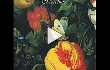 "Morphine - ""The saddest song"""