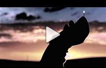 Серж Лютенс Златна колекция - L`Incendiaire